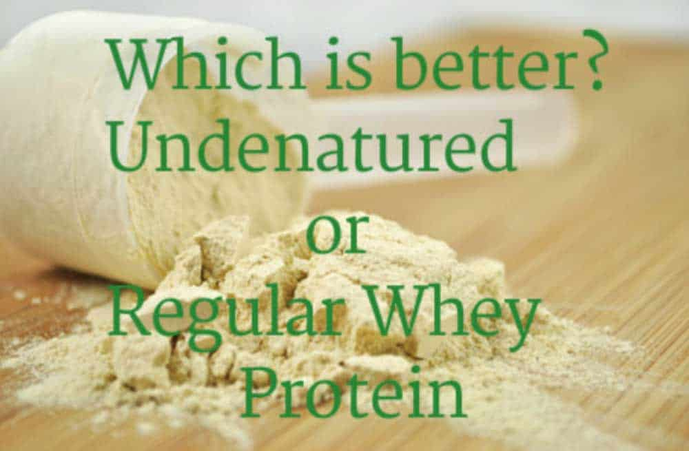 undenatured or whey protein
