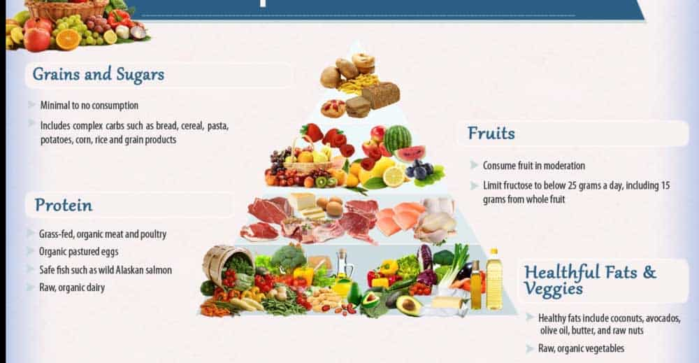 modern food pyramid anti cancer