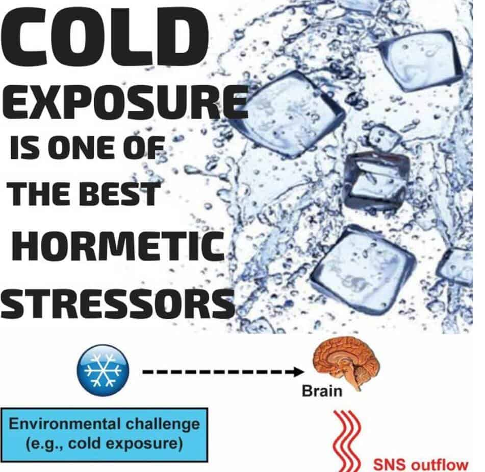 cold exposure ice baths