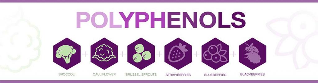 improve gut health with polyphenols